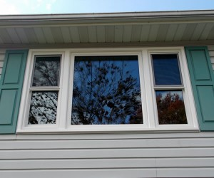 Picture Windows Appleby Systems